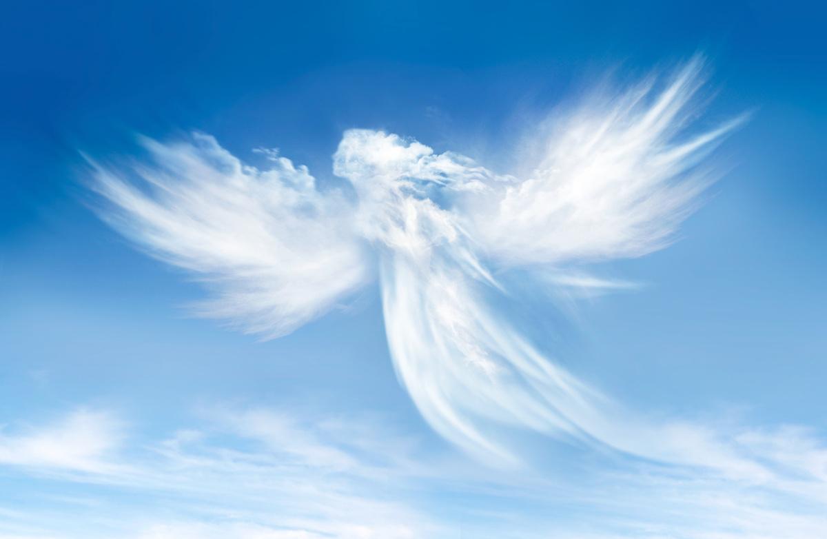 Anges Du Ciel Coop Funeraire De La Rive Nord